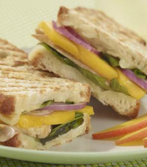 Chicken and Mango Panini